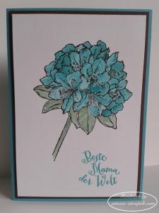 Muttertag Blüte w. 6x820160501_100236