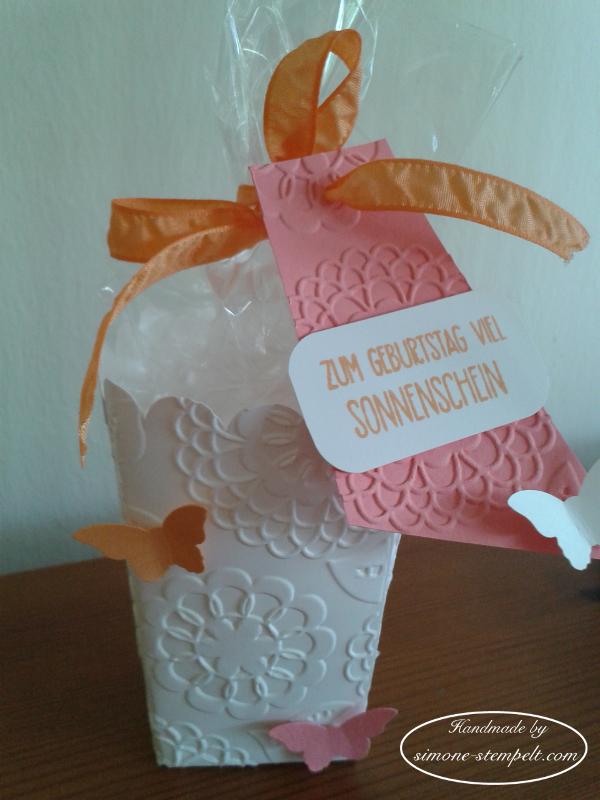Popcorn-Sch. Tr. Schmetterling w.6x8 20160706_143414