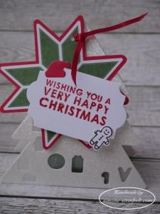 Weihnachtsbaum mit LED Licht mit Video 20117 P1010559