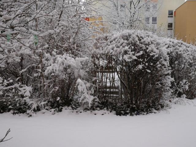 Schnee simone-stempelt 2018 P1020371.JPG